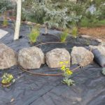 Park City xeriscape installation contractor Utah