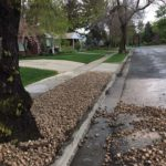 Salt Lake City Utah Landscaping Services