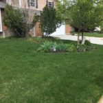 South Jordan UT Landscaping Yardcare